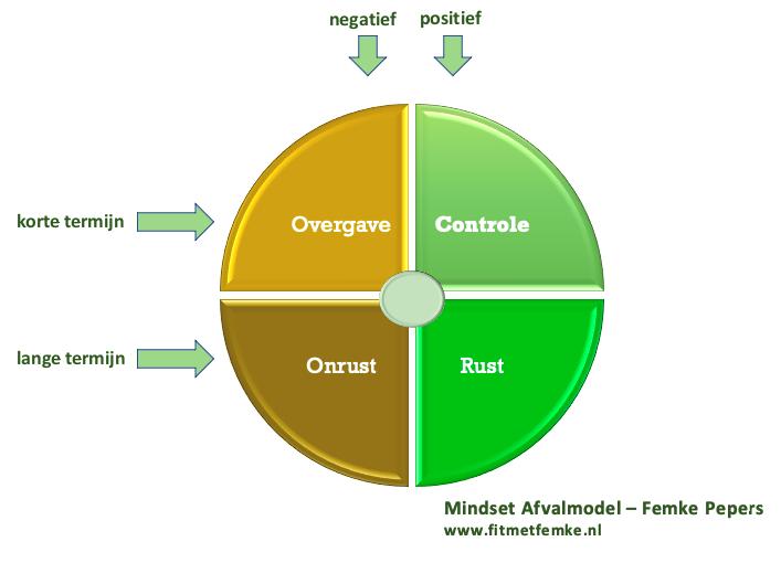 Mindset Afvalmodel ontwikkelt door Femke Pepers. Over hoe je blijvend afvalt met je mindset.
